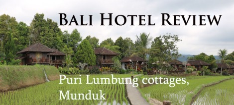 puri-lumbung-cottages-north-bali-review