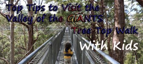 top-tips-visit-valley-of-giants-tree-top-walk-with-kids3